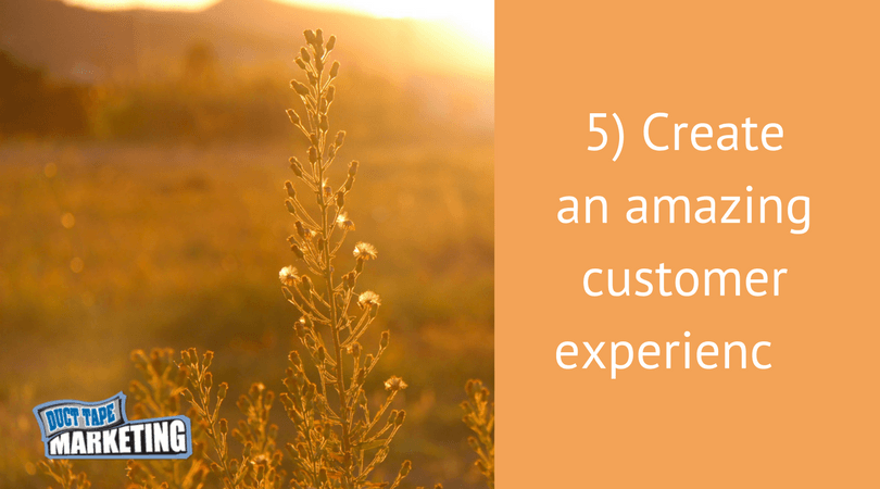 Why Customer Experience Is the Key to an Amazing Business