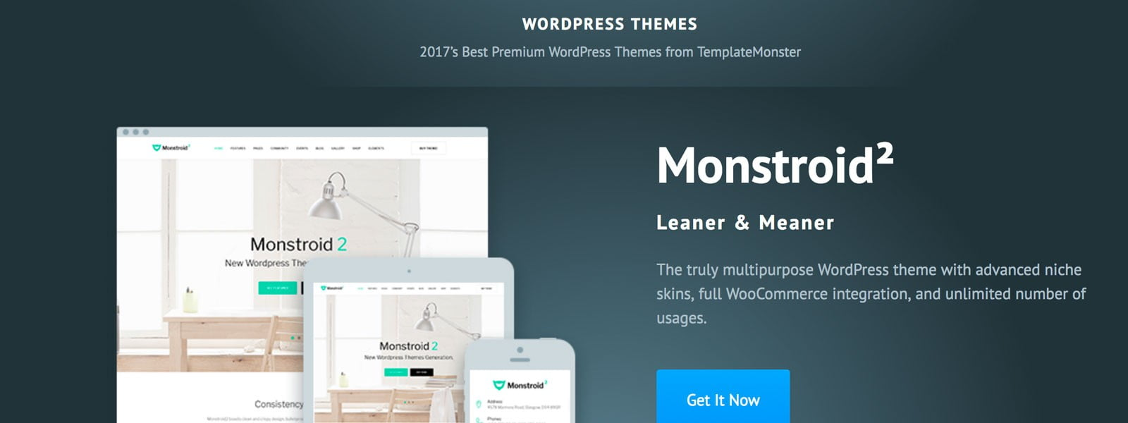 A WordPress Theme for Every Project?