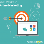 What Works in Online Marketing (2017) Survey Results