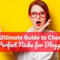 An Ultimate Guide to Choose A Perfect Niche for Blogging