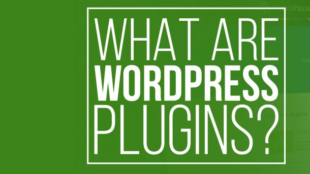 what are wordpress plugins