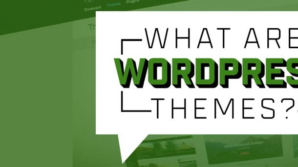 what are wordpress themes
