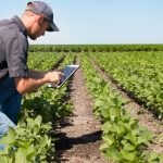 New FDA Guide Should Help Small Farmers Comply with Food Safety Regs