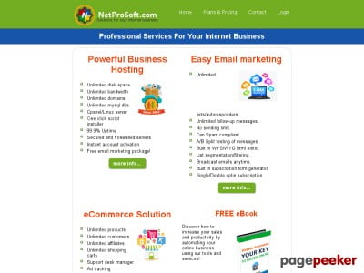 Professional Services For Your Internet Business