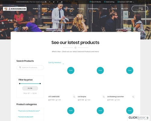 E-business & E-marketing | Kokoshungsan Ltd | The fun never stops.