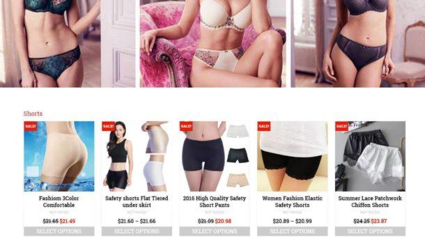Established Profitable Ladies Underwear Turnkey DropShip Website For Sale