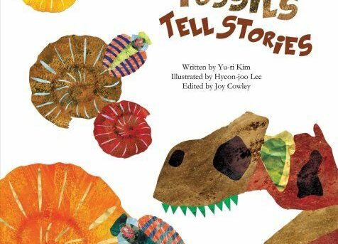Fossils Tell Stories by Yu-Ri Kim (2015, Picture Book)