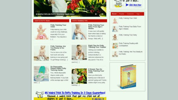 POTTY TRAINING TIPS FOR BABY BLOG & WEBSITE WITH STORE AND AFFILIATES + HOSTING