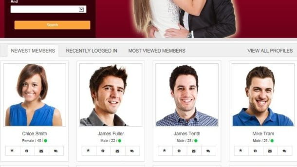 PROFESSIONAL DATING SERVICE WEBSITE FOR SALE! RESPONSIVE MOBILE FRIENDLY WEBSITE