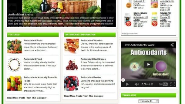 ANTIOXIDANTS BLOG & SHOP WEBSITE BUSINESS FOR SALE! TARGETED CONTENT INCLUD