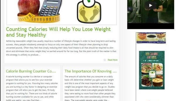 LOW CALORIE DIET PLAN WEBSITE BUSINESS FOR SALE! TARGETED CONTENT INCLUDED