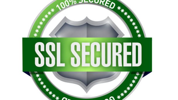 Strongest Ecryption SSL Wildcard For 1 or 2 years **ISSUED THRU GODADDY**