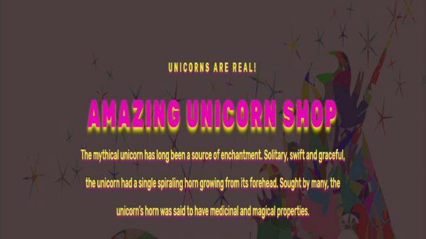 Unicorn Store Wordpress website