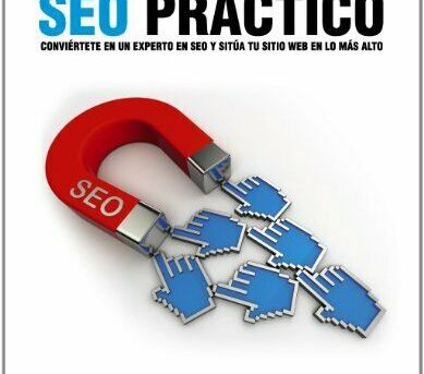 SEO PRACTICO / PRACTICAL SEO (SPANISH EDITION) By Michael H. Fleischner **NEW**