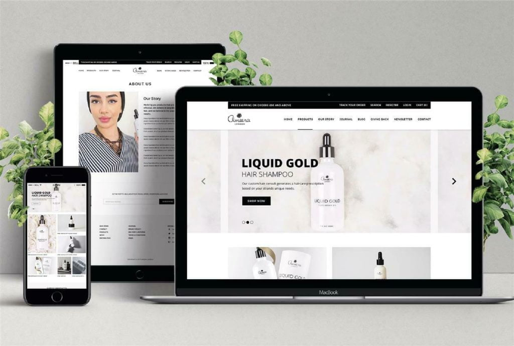 Build Your Squarespace Or Shopify Store Website (Silver Package)