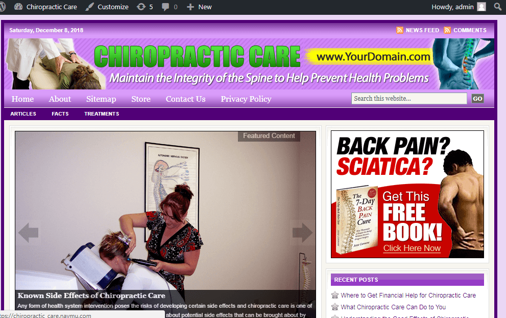 Chiropractic Care Store Website Free Installation + Free Hosting