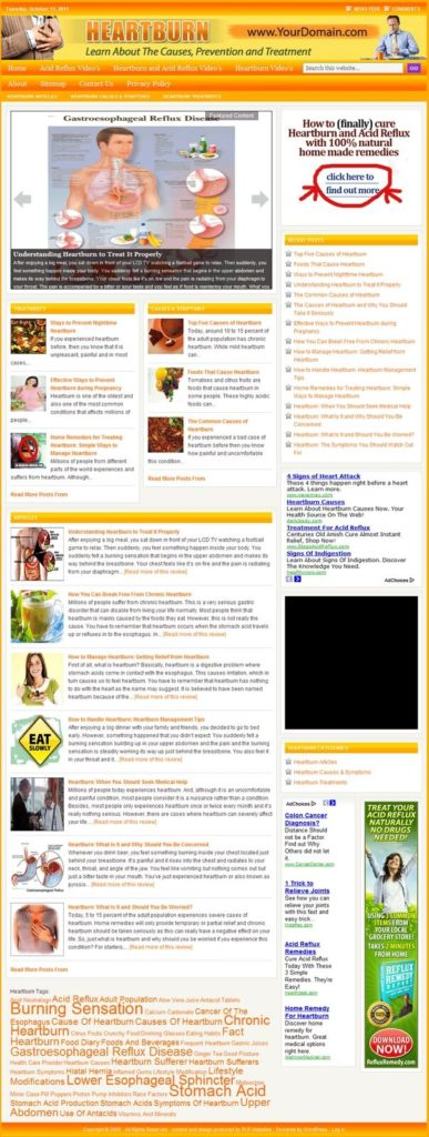 HEARTBURN REMEDIES SHOP WEBSITE and BLOG FOR SALE! with TARGETED SEO CONTENT