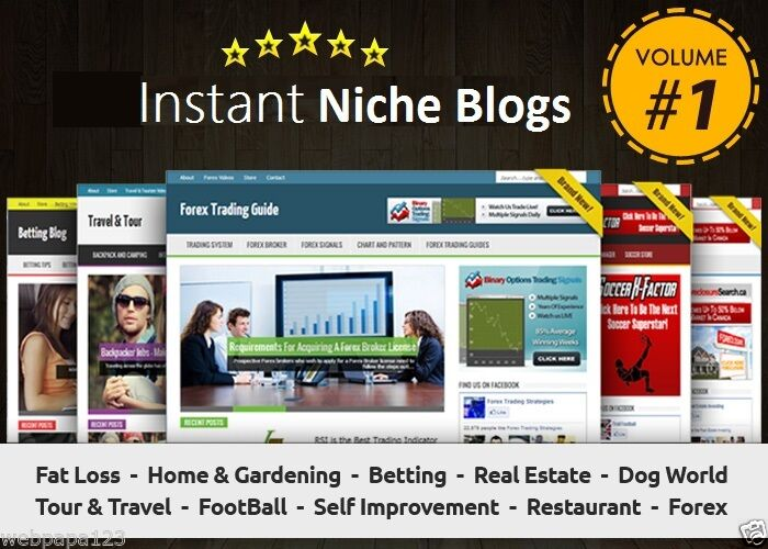 Instant Niche PLR Wordpress Blogs Package - VOLUME#1 - Ready to Business Adsense
