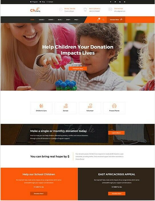 Premium Charity/Fundraising WordPress Site With FREE HOSTING & LOGO