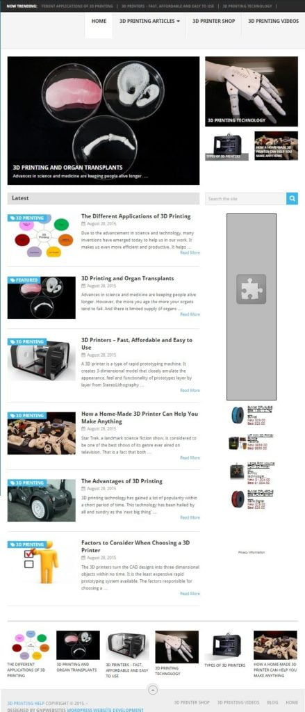 3D PRINTING BLOG and SHOP WEBSITE BUSINESS FOR SALE! w/TARGETED SEO CONTENT