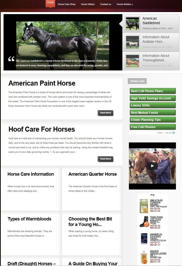 AMAZING HORSE CARE BLOG WEBSITE FOR SALE!