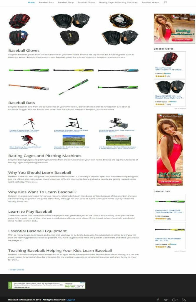 BASEBALL SHOP and BLOG WEBSITE BUSINESS FOR SALE! MOBILE FRIENDLY DESIGN