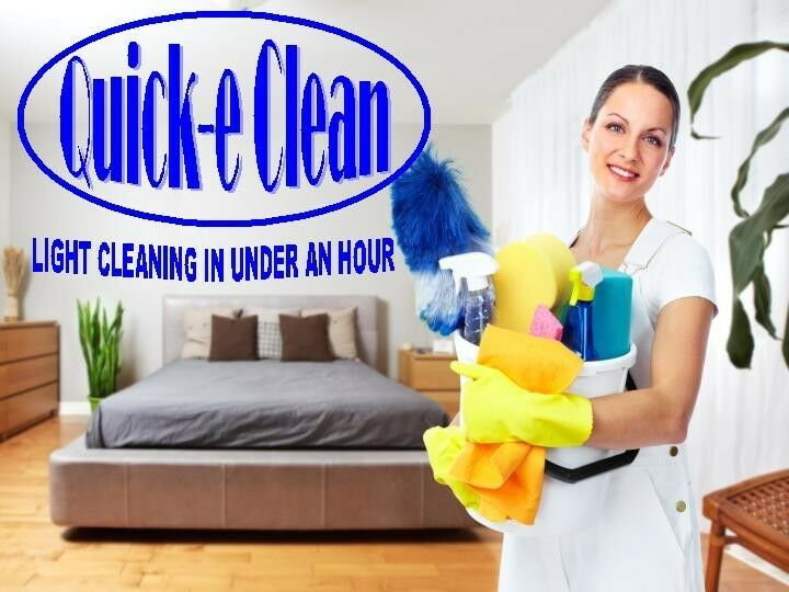 CLEANING SERVICE WEBSITE FOR SALE.