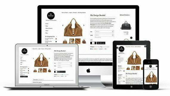 Custom Website,Web Design,E commerce Shop Business &Free Domain