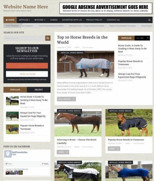 EQUESTRIAN STORE - Professionally Designed Online Business Website For Sale