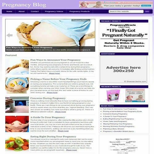 Established 'PREGNANCY BLOG' Affiliate Website Turnkey Business (FREE HOSTING)