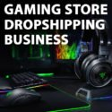 Gaming Accessories Store - Ready To Go Dropshipping Business Website