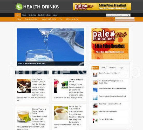 HEALTH DRINKS BLOG / WEBSITE WITH AFFILIATE OPTIONS & NEW DOMAIN & HOSTING