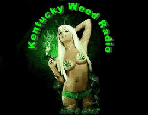 Kentuckyweedradio.com. Domain website and twitter Marijuana Website