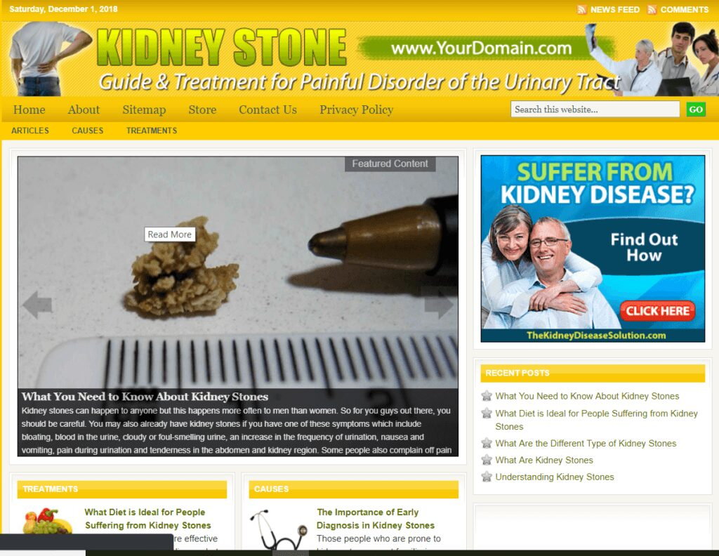 Kidney Stone Guide And Treatment Store Website Free Installation+Free Hosting