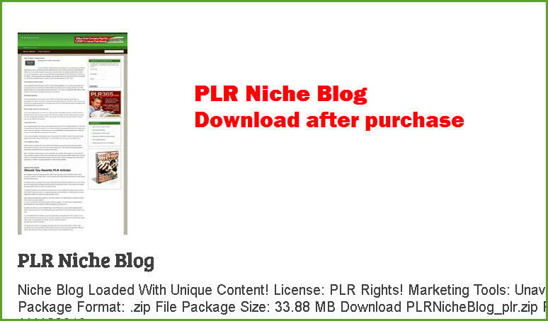 Niche Blog Loaded With Unique Content! Download after purchase
