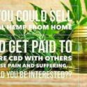 Online CBD (Hemp) Store, Complete Turnkey Business Package