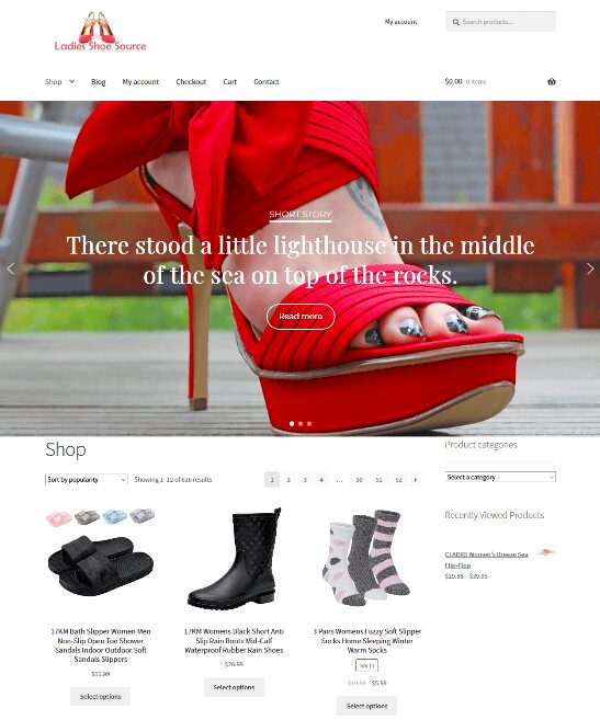 Womans Shoes Website Business For Sale Unlimited Stock