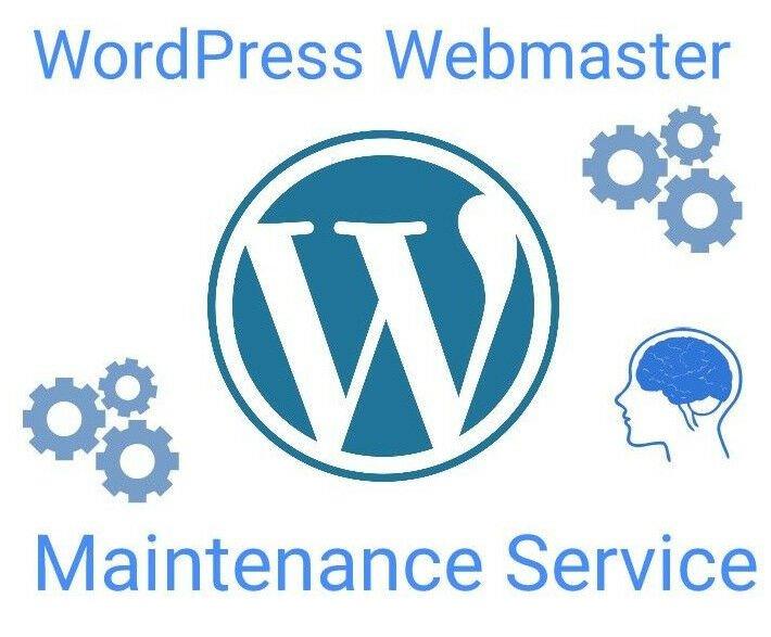 Wordpress Website Webmaster Maintenance Service php mysql - 20 hours per month