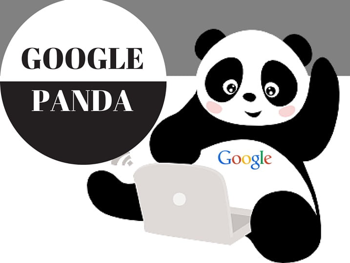 Get to know how google panda can help you
