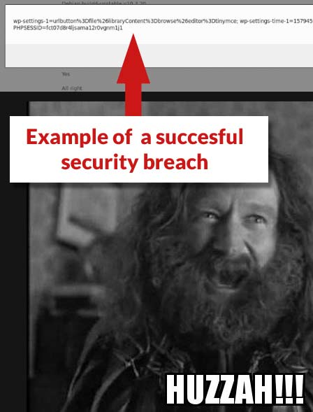 Screenshot from security company that discovered the vulnerability