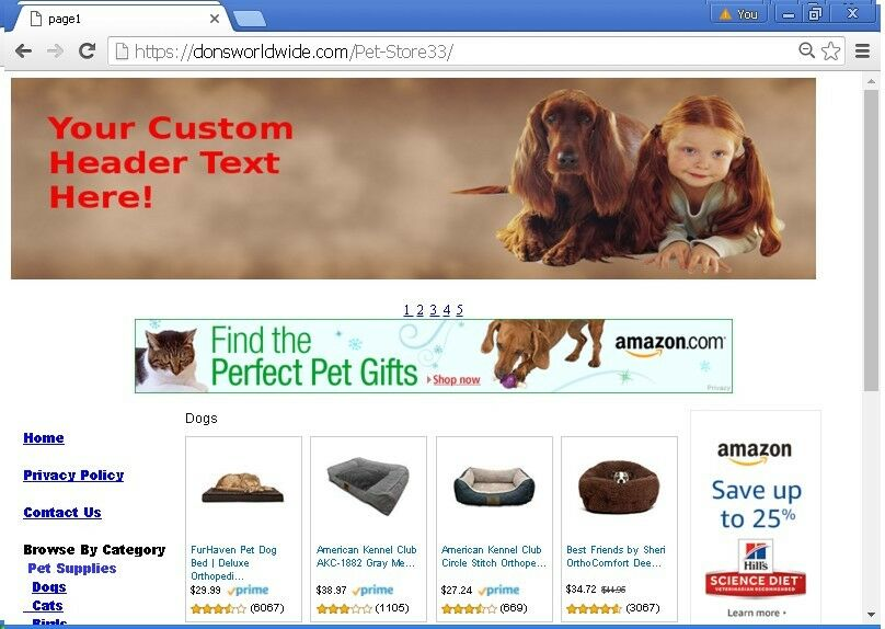 Maintenance Free Turnkey Automated Website For Sale