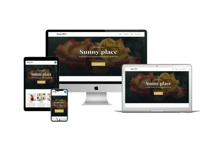Web Design Services Domain and Hosting Included. Professional Website