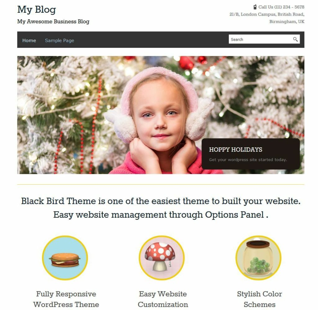 Wordpress Business Website With 3 Months Free Hosting  10 + Plugins