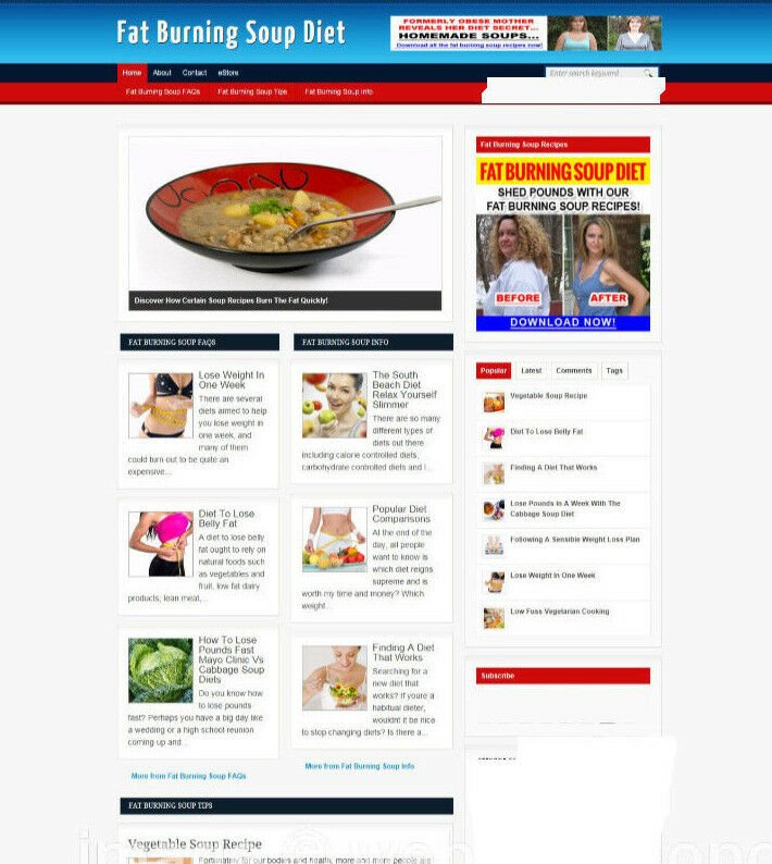 FAT BURNING SOUP DIET WEBSITE BLOG WITH NEW DOMAIN AND AFFILIATE STORE