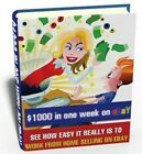 Make 100 in a week with ebay make money e-book online business + resell rigths