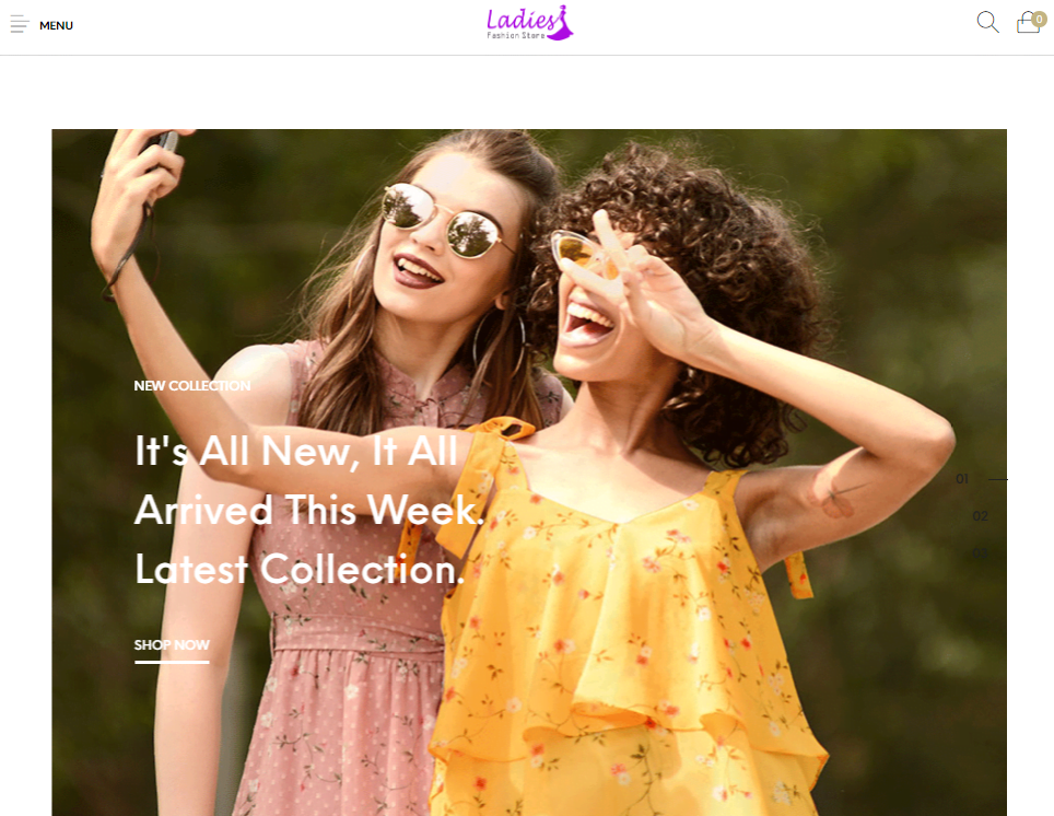Ready made Drop shipping website Free hosting & set up , Ladies Fashion Stores