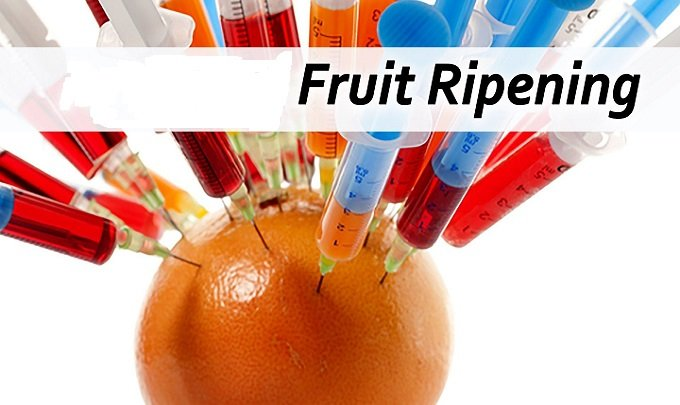 Global Fruit Ripening Gas Market