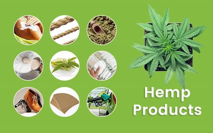 Global Hemp Products Market