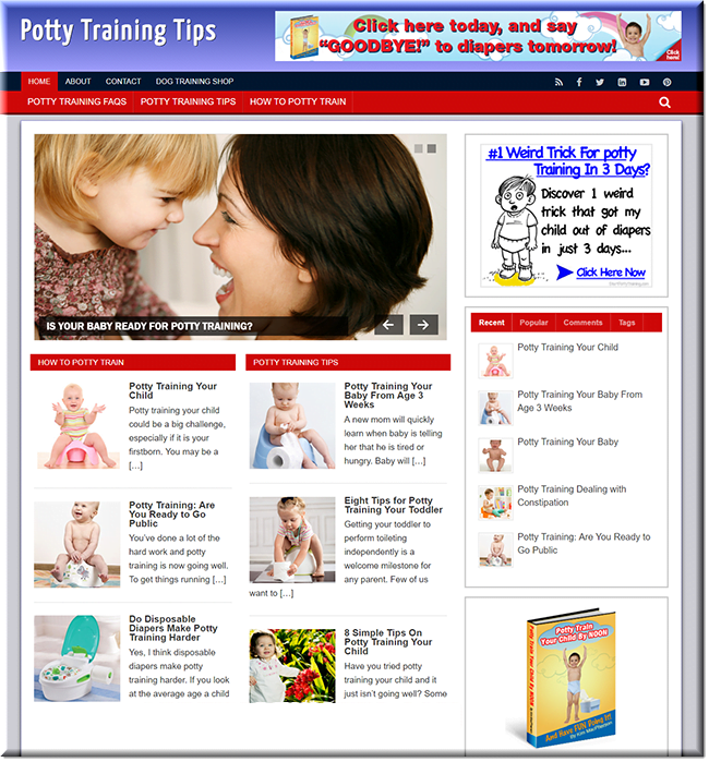 Potty Training  Turnkey Website Business earn from affiliate - adsense
