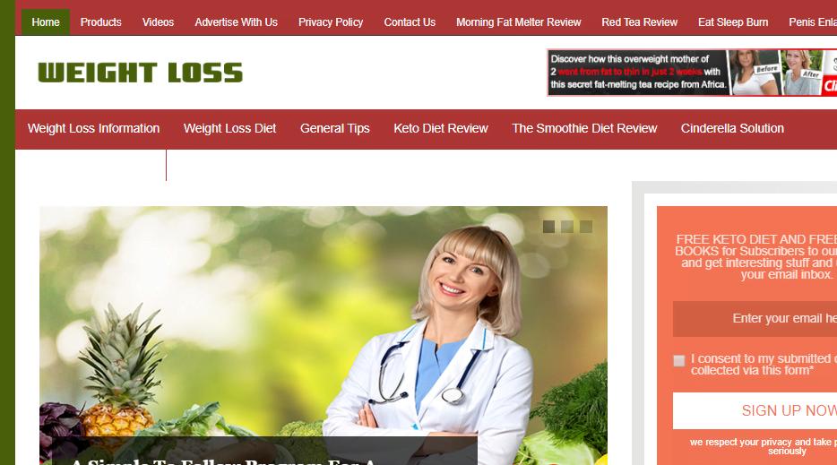 established work from home business website wieghtlossplan.club